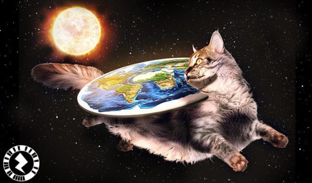 zap of a cat with a flat Earth on its back